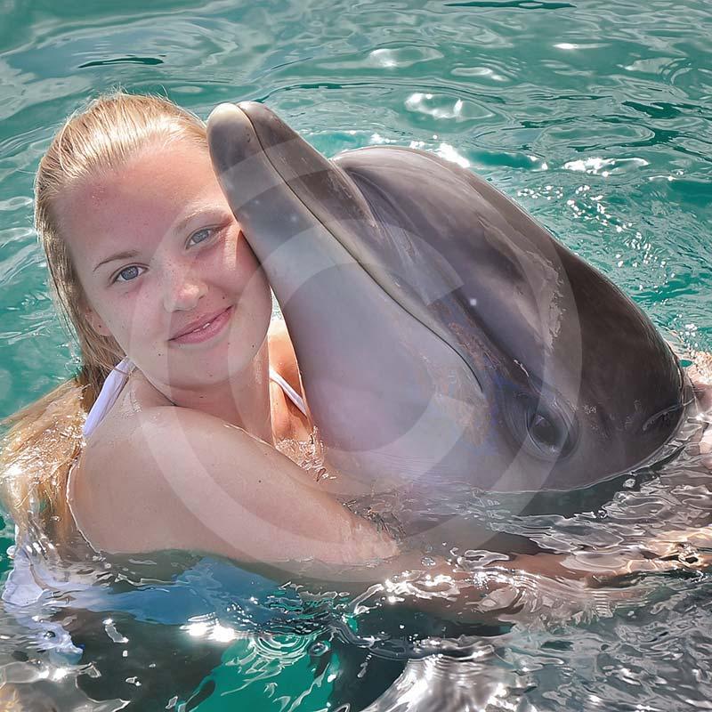 Wycieczki fakultatywne z Bodrum.Delfinarium bodrum pływanie delfinami