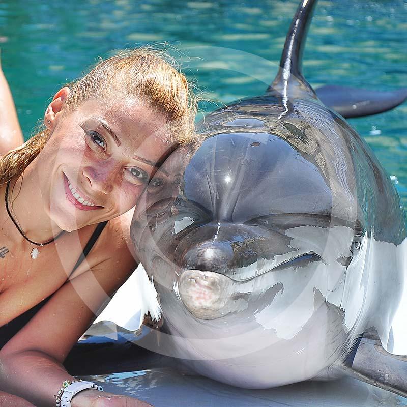 Delfinarium bodrum - pływanie z delfinami i pokaz delfinów